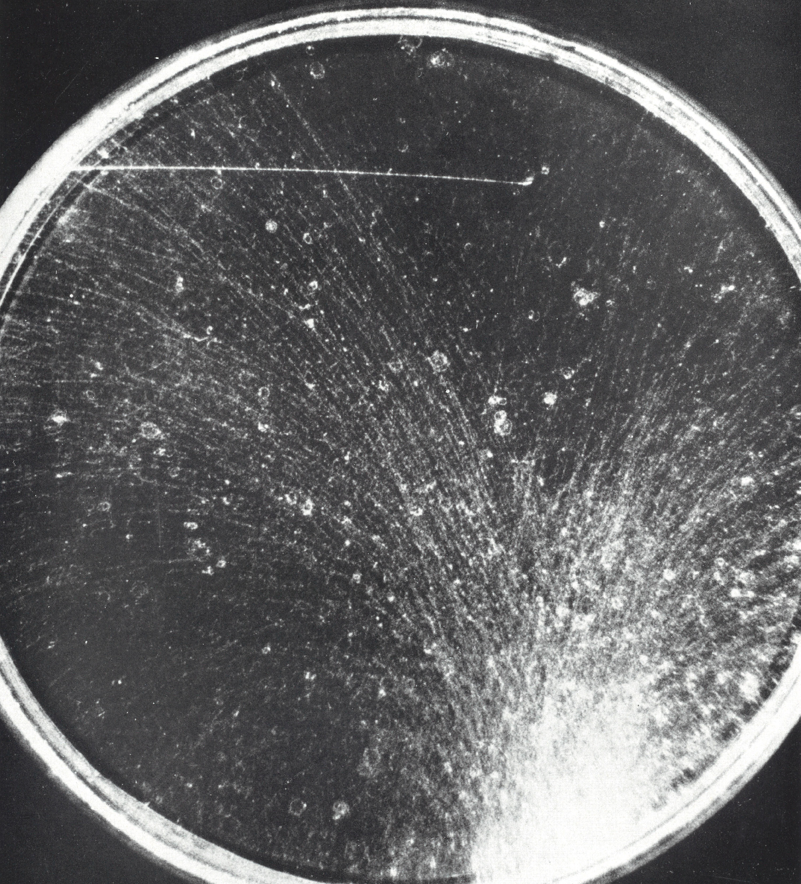 photonuclear reaction cloud chamber